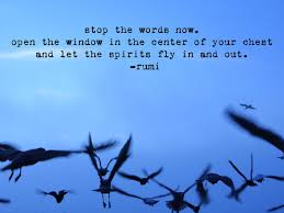 wedding wishes rumi flying birds with rumi quote rumi quotes bird and wisdom