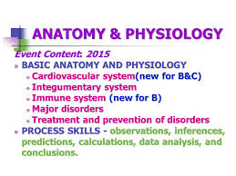 Simple Anatomy And Physiology 2015 Anatomy U0026 Physiology B U0026 C Ppt Download