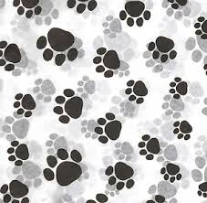 paw print tissue paper 50 large sheets paw print tissue paper dog cat 0231