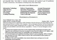 Sample Executive Summary For Resume by Endearing Sample Executive Summary For Resume Wellsuited Resume