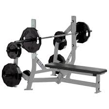 Weightlifting Bench Hammer Strength Olympic Bench Weight Storage Life Fitness