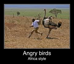 Africa Meme - africa memes image memes at relatably com