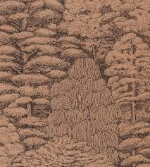 Toile Rugs Sanderson Woodland Toile Wallpaper