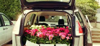 delivery flowers flower delivery archives flowers and homes