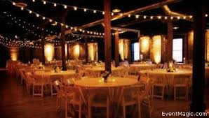 Decorative Indoor String Lights Market And String Lighting For Outdoor Events Event Magic