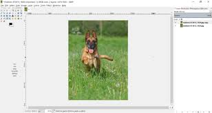 how to turn photos into colored pencil drawings in gimp 2 8 free