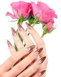 services nail salon livonia nail salon 48154 cosmic nails