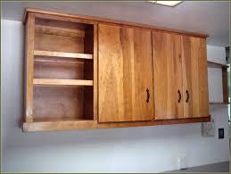 Birch Kitchen Cabinets by White Birch Kitchen Cabinets Home Design Ideas