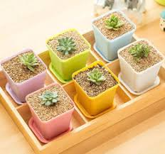 Small Desk Plants by Small Artificial Potted Plants Online Small Artificial Potted