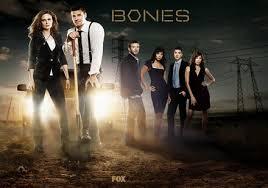 Seeking Temporada 1 Mega Estreno Bones Temporada 10 02 Sub Esp Mega Identi
