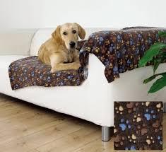 repulsif chien pour canapé canapé pour chien canapé chien grande taille confort pour votre chien