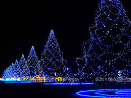 2016 merry pictures and high resolution images for
