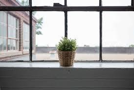 cleaning windows with vinegar 11 ways to use vinegar around the house 1 million women