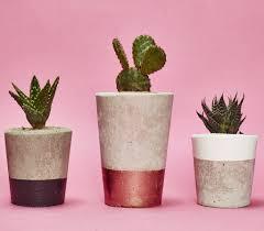 small black concrete planter cactus succulent u2013 hi cacti
