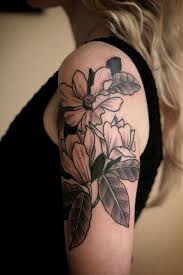 simple magnolia flower for creativefan