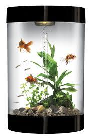 fish tank best biorb fish tanks images on pinterest home decor
