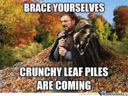 Brace Yourself Memes - brace yourselves memes best collection of funny brace yourselves