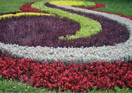 home and decorating bedroom perennial flower garden design cadagu idea small ideas