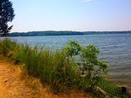 Silver Lake State Parkmaps U0026 Area Guide Shoreline Visitors Guide by Lake Anna State Park U2013 Virginia U2013 Planned Spontaneity