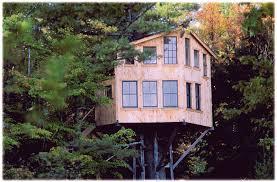 Tree House Home Japanese Tree House Design Quecasita