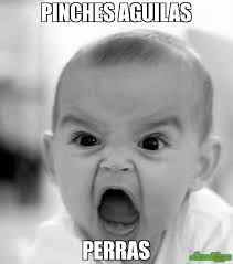 Pinches Memes - pinches aguilas perras meme angry baby 2557 memeshappen