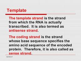 transcription mechanism