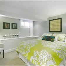 Small Basement Decorating Ideas Bedroom U0026 Bathroom Cozy Basement Bedroom Ideas For Modern Bedroom