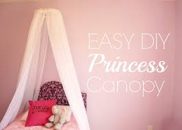 Disney Princess Toddler Bed With Canopy Contemporary Canopy My Made This Along With