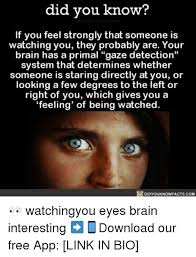Watching You Meme - did you know if you feel strongly that someone is watching you they