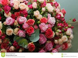 Multicolor Roses Multicolor Roses Bouquet Stock Photo Image 52400011