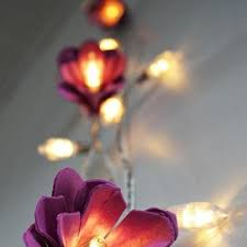 Homemade Light Decorations 33 Best Ways To Decorate Fairy Lights Images On Pinterest Fairy