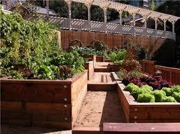 stylish raised planter design raised bed vegetable gardening