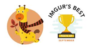 the imgur blog