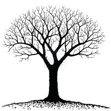 pin barren family tree 3 90 cool printable template childrens