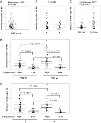 epithelial u2013mesenchymal transition is associated with a distinct