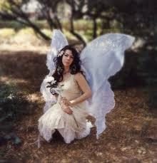 Halloween Costume Fairy Wings 99 Fairy Wings Images Fairies Garden Fairy