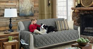Fabric Protection For Sofas Sofa Endearing Best Couch Covers For Pet Owners Miraculous Sofa