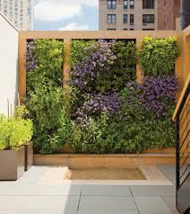 a green wall can add beauty and benefits to your landscape