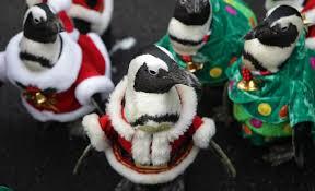 gallery penguins dress as santa claus at everland metro uk