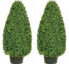 faux boxwood trees outdoor faux trees silk tree warehouse
