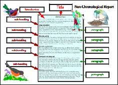report writing template ks1 ks1 how to writing a non chronological report writing non