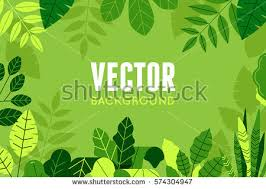 plant stock images royalty free images u0026 vectors shutterstock