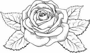 imagenes para colorear rosas imágenes de flores para colorear y pintar