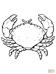 crab coloring page free printable crab coloring pages for kids