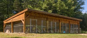 hunting dog kennel designs bing images dog kennel designs