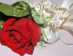 Happy Anniversary Wedding Wishes Happy Anniversary Weddings Top Wedding Design And Ideas