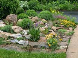 Bush Rock Garden Edging Rock Garden Edging Garden Trim Ideas Border Garden With Rock
