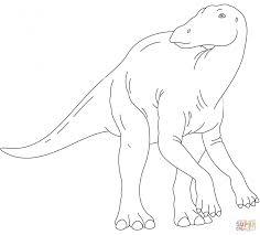 coloring download iguanodon coloring page iguanodon dinosaur