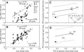 in vivo bite and grip forces morphology and prey killing behavior