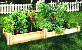 Small Outdoor Garden Ideas Outdoor And Patio Small Backyard Vegetable Garden Ideas In